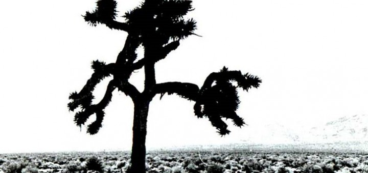u2_-_the_joshua_tree_f